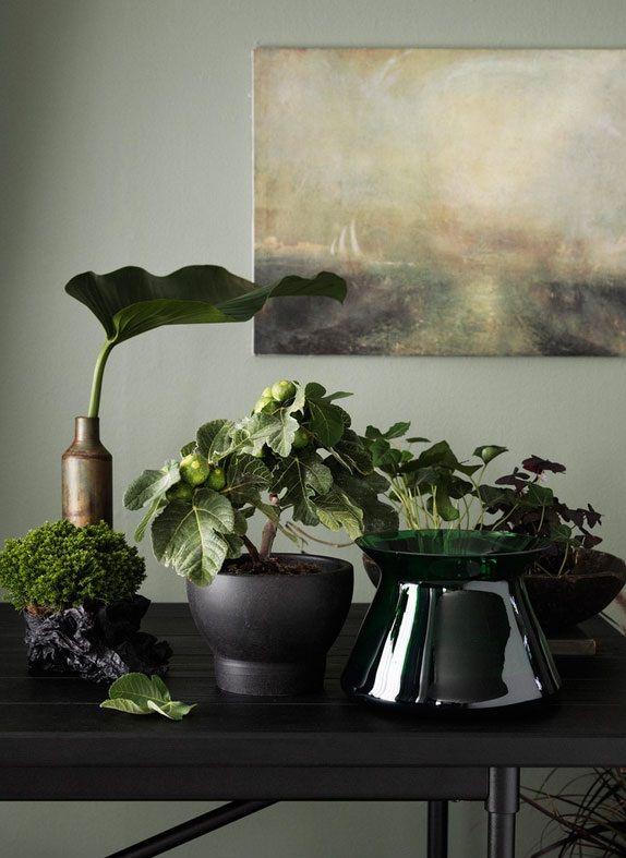 Ga voor een bonte verzameling van verschillende planten en speel met structuur…