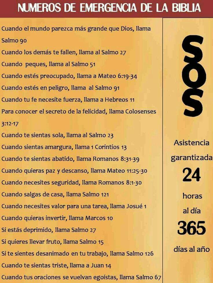 Pin De Rodrigo Ariel En A Números De Emergencia De La Biblia Biblia Frases De La Biblia