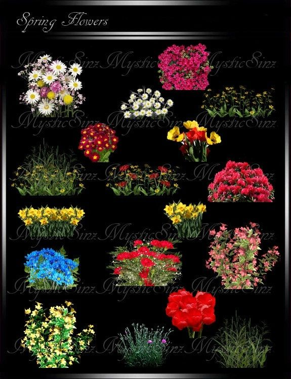 Imvu Textures Spring Flowers In 2019 Spring Flowers