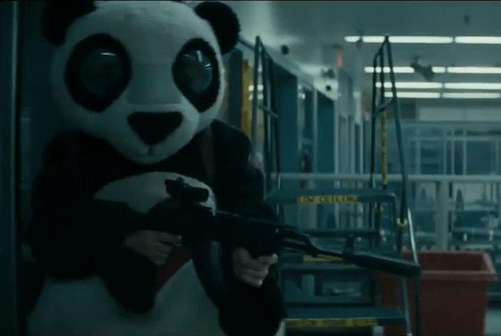 Baby Panda Information Funny Gif #1321 - Funny Panda Gifs  Funny Gifs  Panda Gifs
