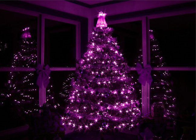 my home reference black christmas tree with purple lights my - Purple Christmas Tree
