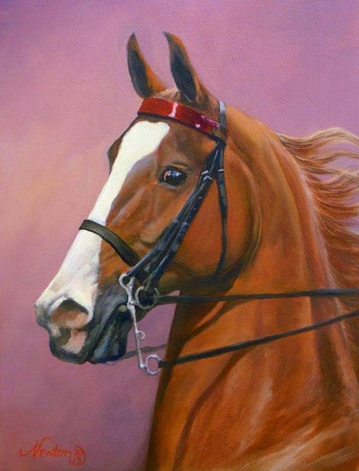 Resultado de imagen para pinterest dibujos caballos
