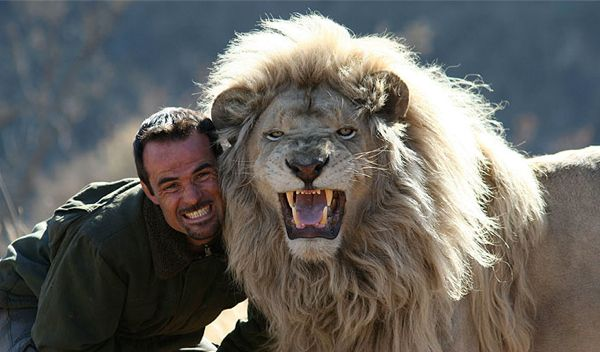 This Man Hugs And Cuddles With Lions. It's Incredible, You've To See It To Believe.