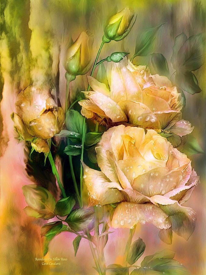 Raindrops On Yellow Roses ~ Carol Cavalaris