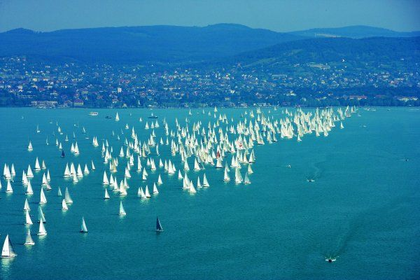 #Blue #Ribbon #Kékszalag #sailing #Balaton #championship #regatta
