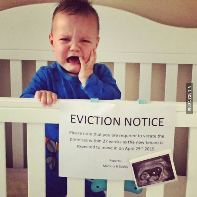 best 25  eviction notice ideas on pinterest
