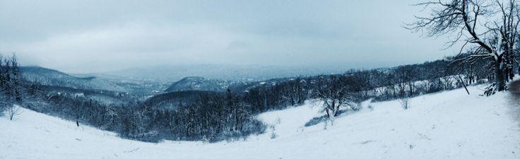 Winter time. Normafa, Hungary.