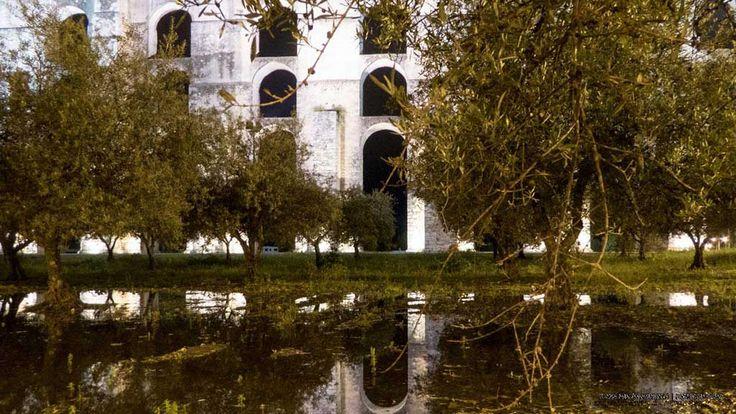 Cores do Alentejo - Reflexos | Portal Elvasnews