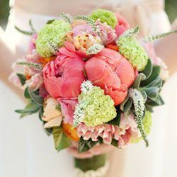 Bridal bouquet made with coral charm peonies, peach and blush parrot tulips, green vibernum, white veronica, fuzzy succulents, orange and pale pink…
