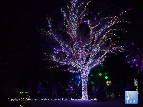 160 best Christmas - Holiday Light shows, Festivals & More! images ...