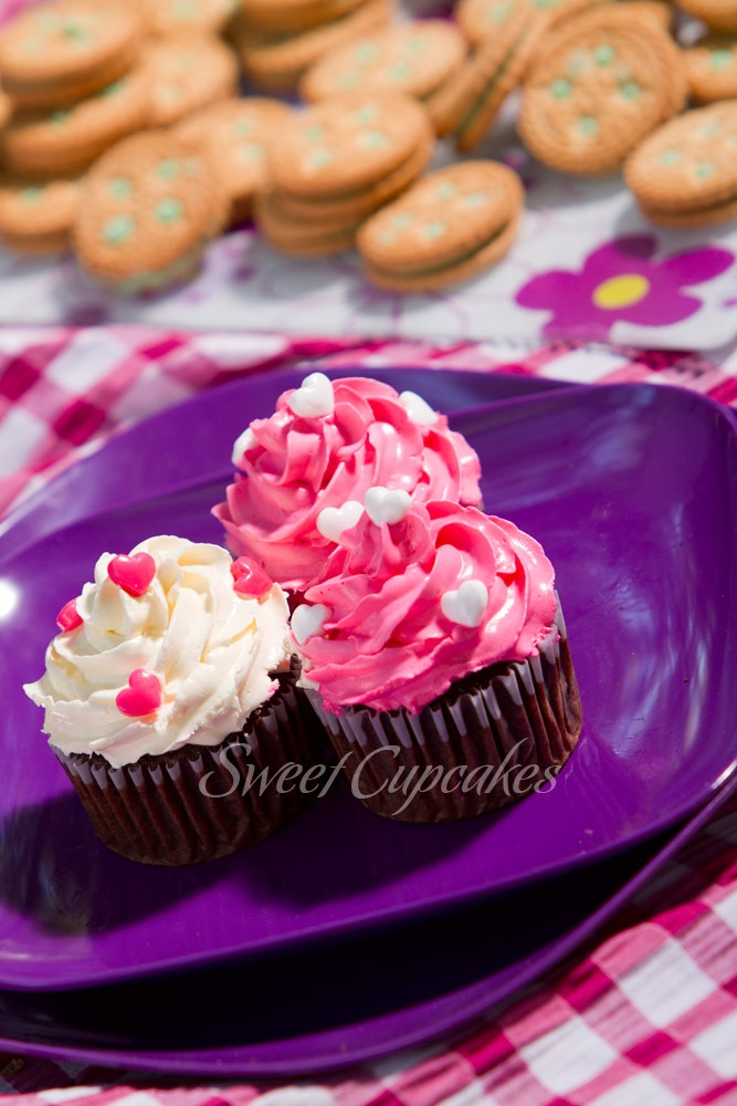 Cupcakes de chocolate con crema de mantequilla rosada y blanca.    Copyright® Sweet Cupcakes