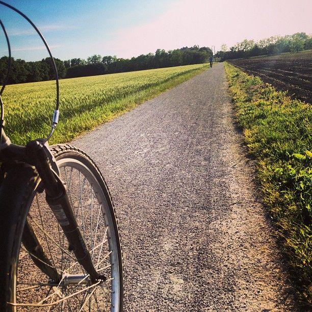 Sunday we love riding MTB near Milan - Parco delle Groane