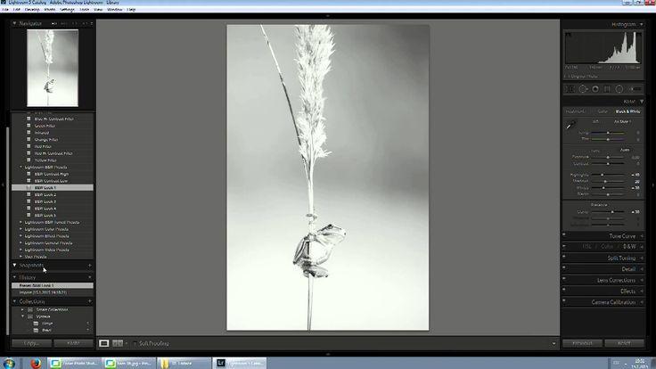 Adobe Photoshop Lightroom  2 ukázka