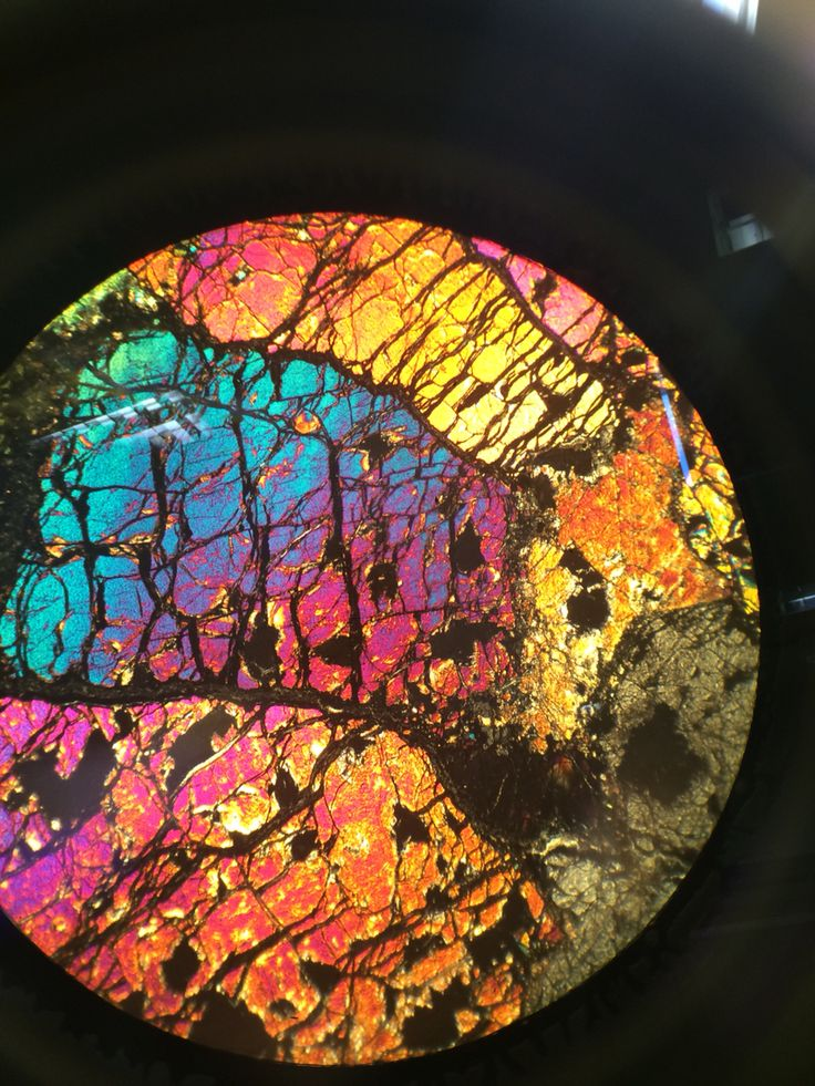 Garnet Peridotite In Thin Section Rich With Olivine