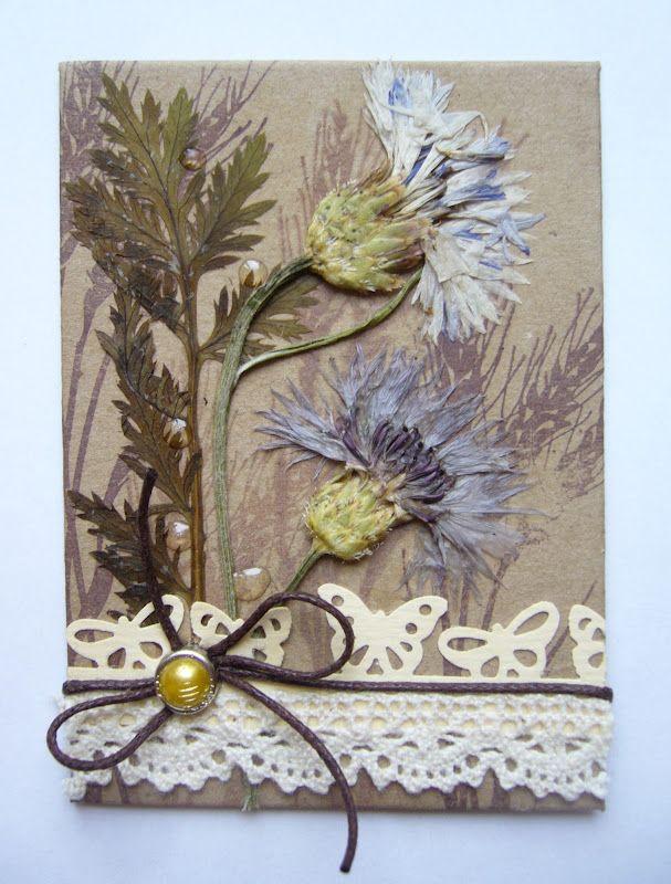 открытки из сухоцветов ручная работа жизни