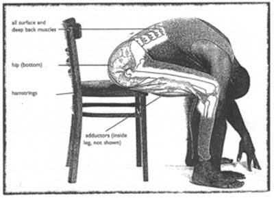 low back stretches | Stretch: to hold out, reach forth or extend
