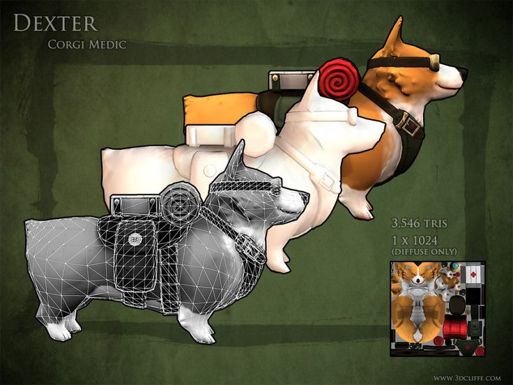 corgi medic cute dog zbrush 3d pet low poly hand painted texture