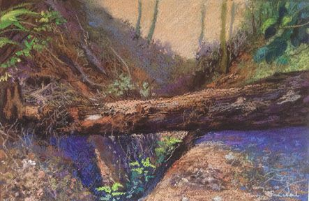 Soft pastel painting of a tree trunk as seen at the coffee plantations in Coorg. The painting has been created on Fabriano Tiziano paper.
