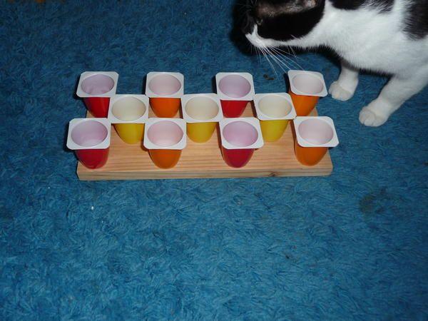 Zeigt her Eure Fummelbretter - Katzen Forum