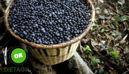#acai #dieta #borówkaamerykańska #nowotwory #walkazrakiem #berrygood #berries