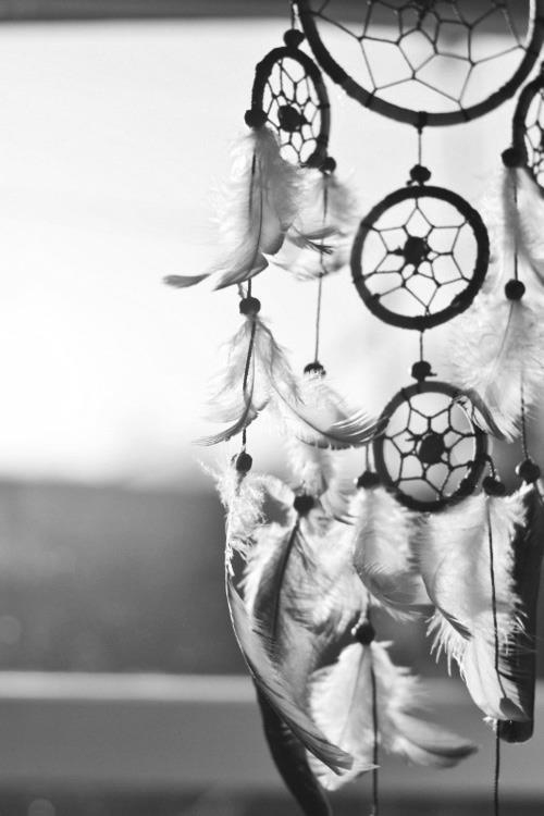apanhador de sonhos | Tumblr                                                                                                                                                                                 Mais