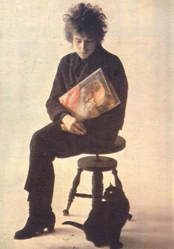 OTP: Bob Dylan and cats