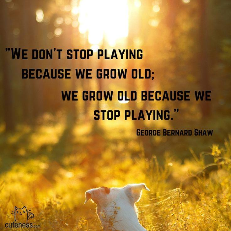 Senior Cat Quotes: 25 Best Images About Pet Quotes On Pinterest