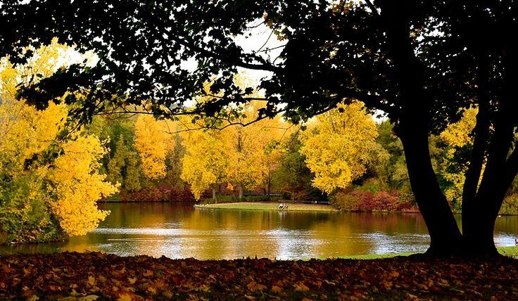Rheinaue Park, Bonn, Germany
