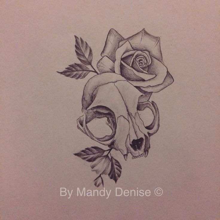 Design Mandy Denise#cat #skull #rose #tattoo