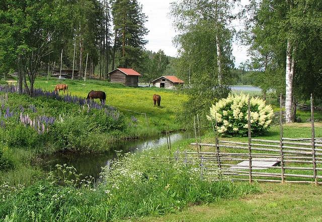 Idyllic Dalarna, Sweden