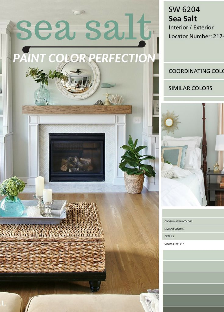 Why I Love Sherwin Williams Sea Salt Paint Color Paint