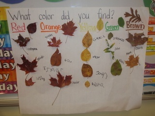 During the fall: take the kids outside and have them each pick one leaf, then graph them and learn counting and organization