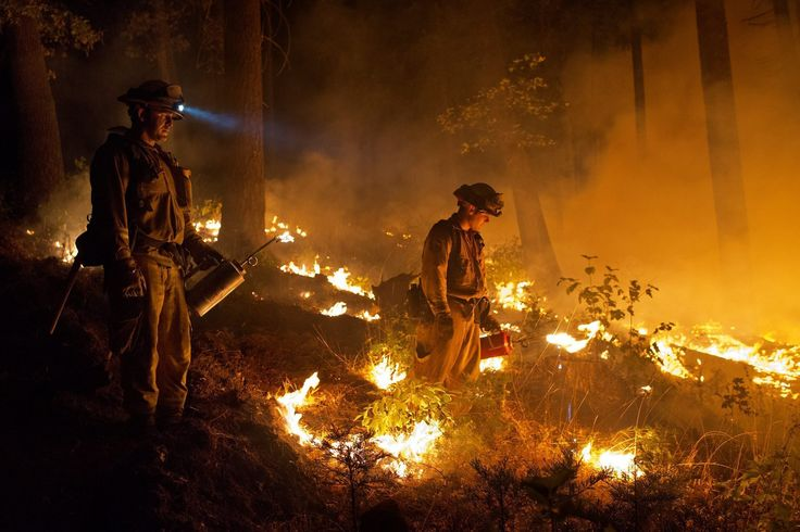 King fire in El Dorado County  Firefighters use drip torches to set a controlled burn to create a safe zone around homes close to the King fire near Pollock Pines, Calif.  http://www.latimes.com/local/wildfires/la-me-king-fire-eldorado-photos-012-photo.html