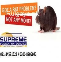 Since 1996, Supreme Fumigation Services, has been helping homeowners and property managers control pest, termite and water tank cleaning problems in Karachi, for residential and commercial properties. We immediately assess and address current pest infestations and help you prevent them from happening in the future. With our proven techniques and an integrated approach to pest management, we will deal with unwanted:     Ants     Fleas     Termites     Roaches     Spiders     Carpet beetles…