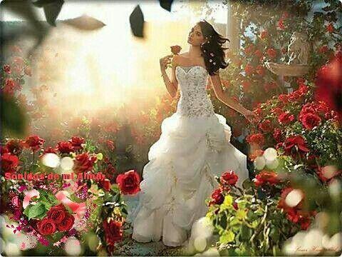 Para el alma, la fuerza.  Para el corazón, la fe.  Para las peleas, la esperanza.  Para el mañana, la confianza.  Para el momento, la paciencia.  Https://www.facebook.com/sonidosdemialma