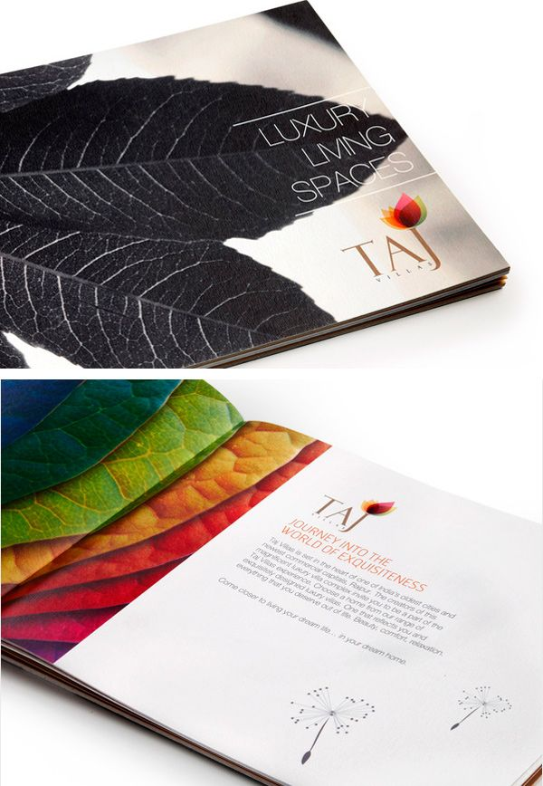 Best Brochure Design Images On   Brochures Editorial