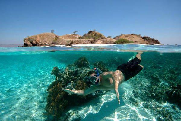 Gili Trawangan - Happy Tourist Snorkeling