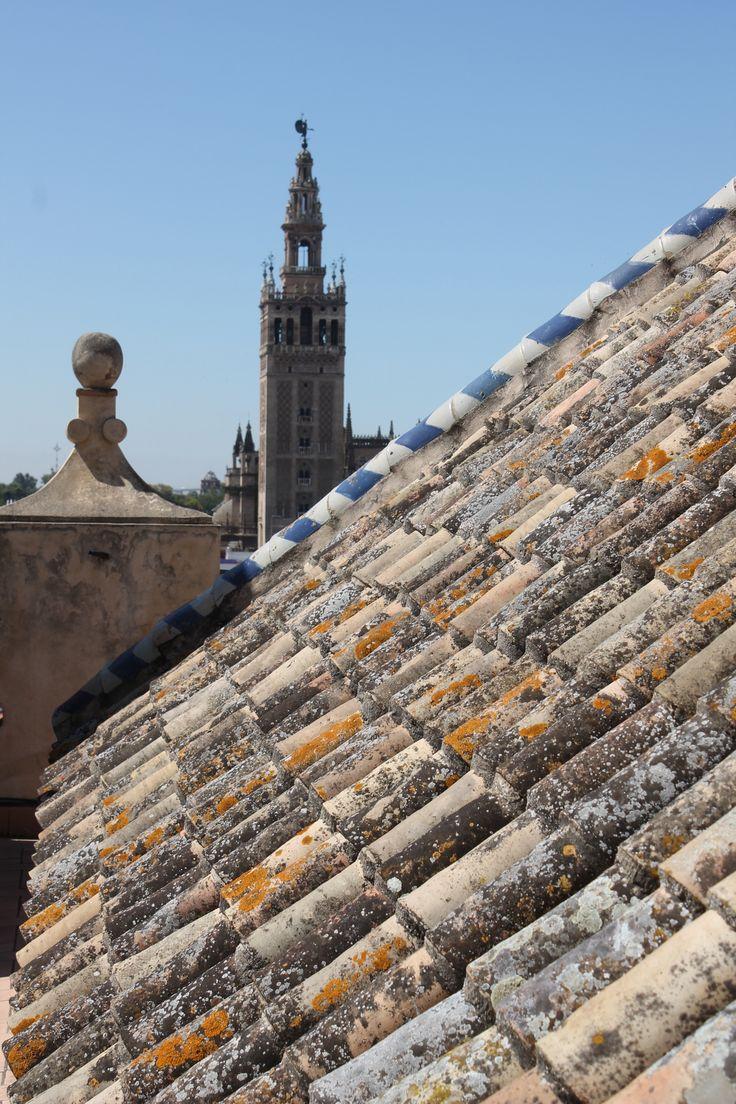 La Giralda desde los tejados de la iglesia Del Salvador.