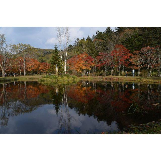 【yuchi_sakai】さんのInstagramをピンしています。 《* 🌏🍁🍂紅葉🍁 ∵ ∵ 然別峡の福原山荘🍁🍂 今が見頃(*^^*) 紅葉狩りの人達がいっぱい‼ 地元で有名なビュースポット‼ * (*^^*) ∵ ∵ 紅葉の撮影は赤・緑・黄、 雲・空・日陰等で難しいですね。 今回は山🗻・池ありです。 リフレクションもありです。  #池 #紅葉 #絶景 #風景 #自然 #景色 #森林 #福原山荘 #然別峡 #鹿追町 #reflection #viewpoint #special_spot #landscape #ig_nature #ファインダー越しの私の世界 #写真撮ってる人と繋がりたい #写真好きな人と繋がりたい #hokkaido #hokkaidolikers #ig_japan #loves_japan #nikon #d5300》