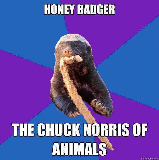 Honey Badger Norris Meme Troll Face Rage Comics Viral Humor Funny T