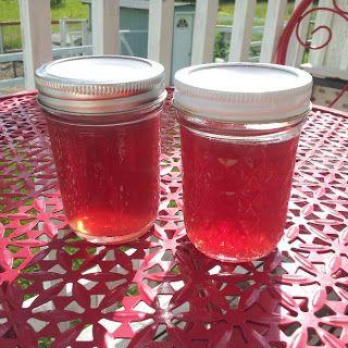Pomonas Fireweed jelly