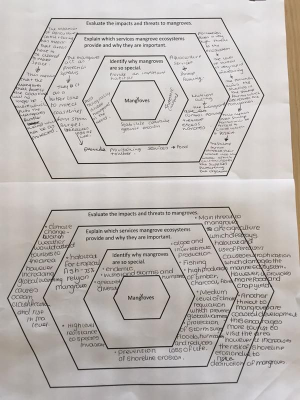"""Ms Malik on Twitter: """"Excellent use of #solotaxonomy in Geo yest. Very impressed with Yr12 &13 @moosaddik @NicolaalaaBaker @NCSPrincipal1 http://t.co/Gio0GxLm52"""""""