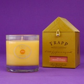 Trapp Orange Vanilla candle...Trapp candles are the best!