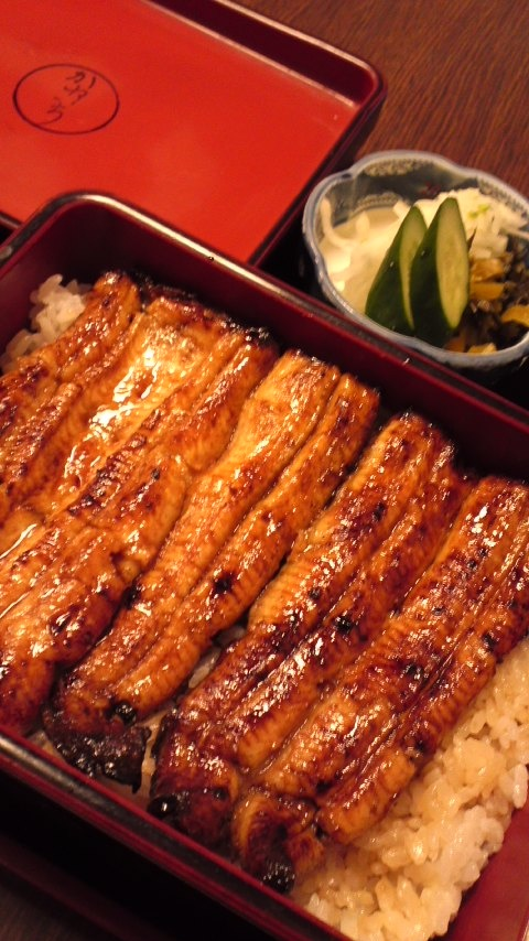 Unaju: Japanese Traditional Food, Eel on Rice with Tare Sauce //Manbo