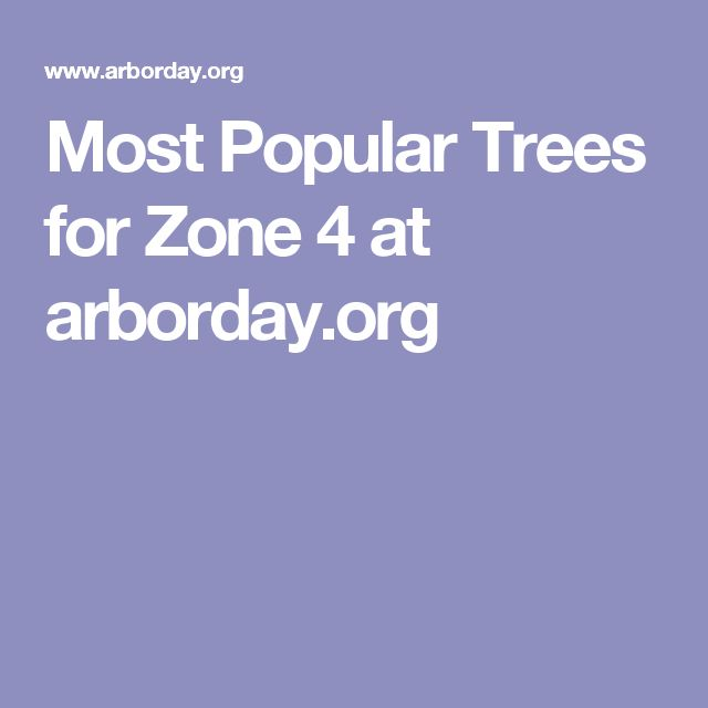 Most Popular Trees for Zone 4 at arborday.org