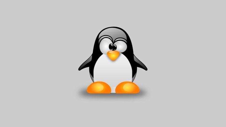 Un bug che consente l'escalation dei privilegi è stato scoperto di recente su Linux, ma sarebbe in attività da ben nove anni. La patch ufficiale è già stata rilasciata