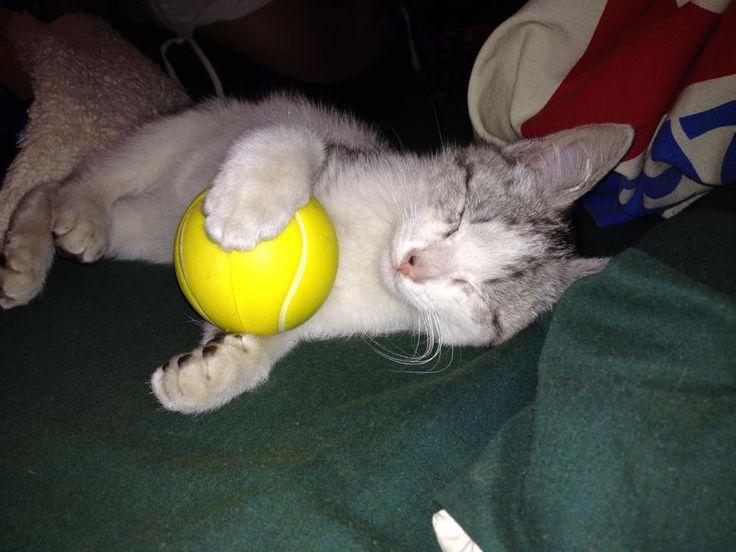 :3 con su pelotita