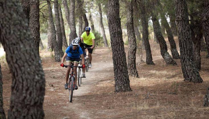 La Sierra de Guadarrama es uno de los parajes naturales más frecuentados por los amantes de la naturaleza en la zona centro de la península.