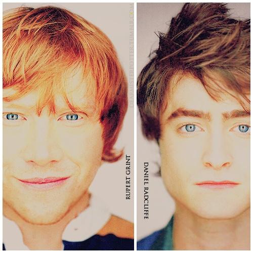 HP Boys