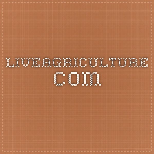 liveagriculture.com